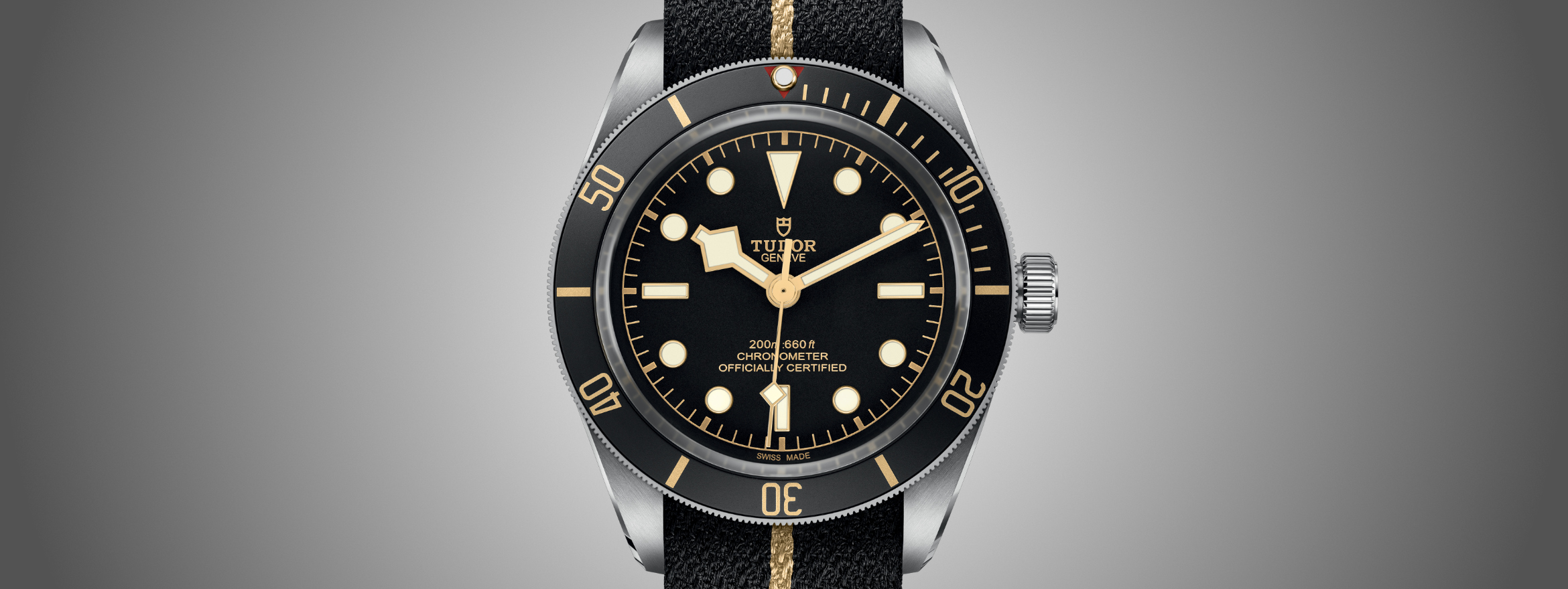 hot sales 8608a dad7c Shields and Roses - Looking at Iconic Modern Tudor Watches - The Hour Glass
